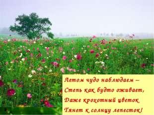 Летом чудо наблюдаем – Степь как будто оживает, Даже крохотный цветок Тянет к