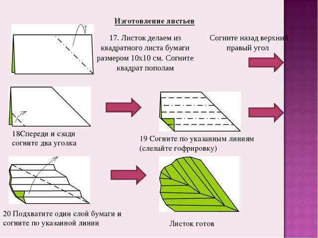 Изготовление листьев 18Спереди и сзади согните два уголка 19 Согните по указа...