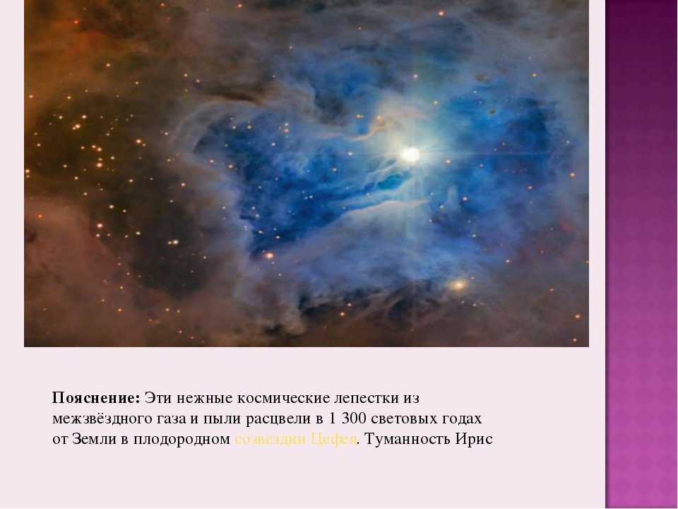 Пояснение:Эти нежные космические лепестки из межзвёздного газа и пыли расцве...