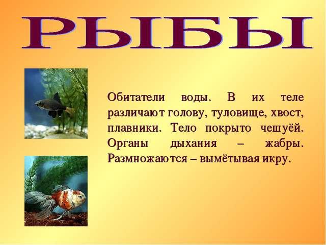 Обитатели воды. В их теле различают голову, туловище, хвост, плавники. Тело п...