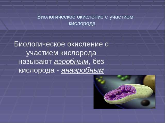 Биологическое окисление с участием кислорода  Биологическое окисление с уч...
