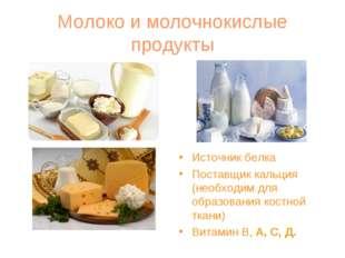 Молоко и молочнокислые продукты Источник белка Поставщик кальция (необходим д