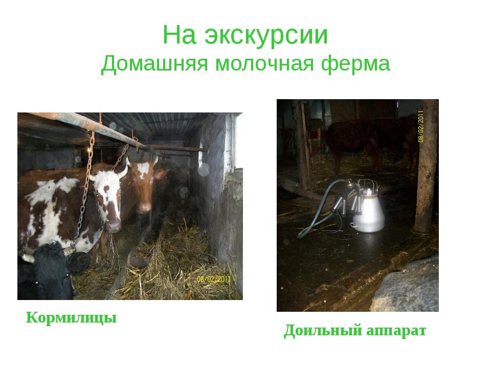 На экскурсии Домашняя молочная ферма Доильный аппарат Кормилицы