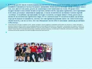 В России растёт число сознательной и политически подкованной молодёжи, котора