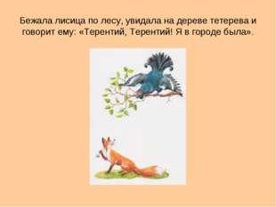 Бежала лисица по лесу, увидала на дереве тетерева и говорит ему: «Терентий, Т