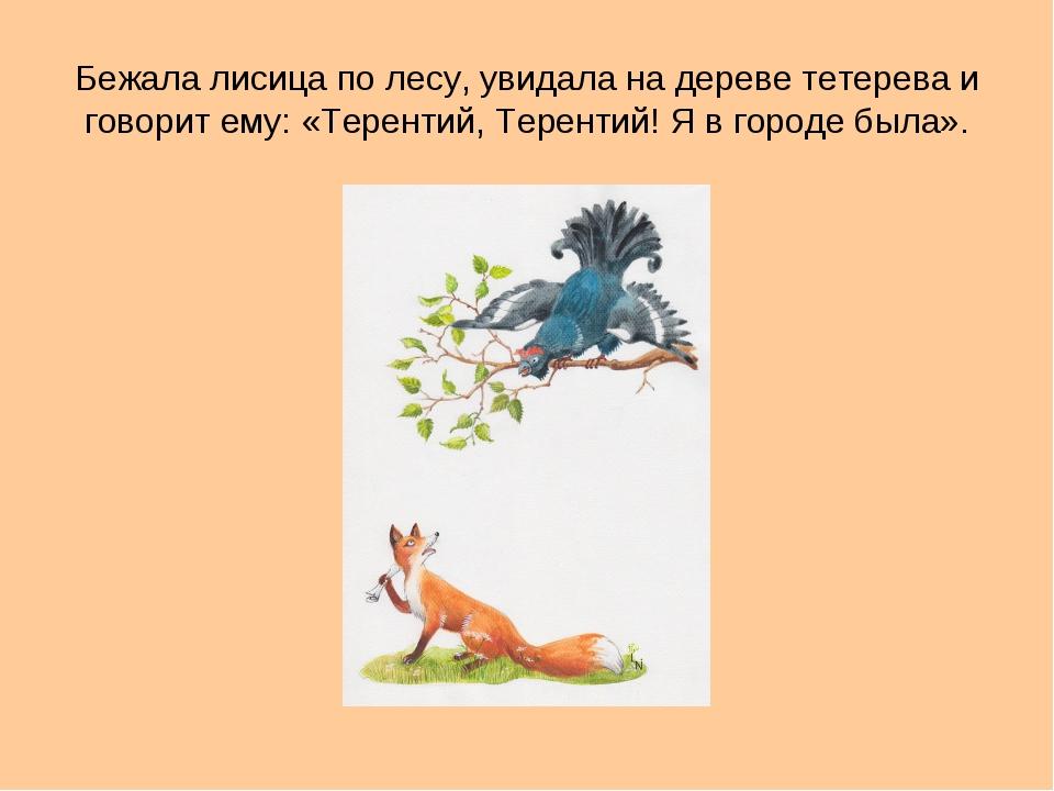 Бежала лисица по лесу, увидала на дереве тетерева и говорит ему: «Терентий, Т...