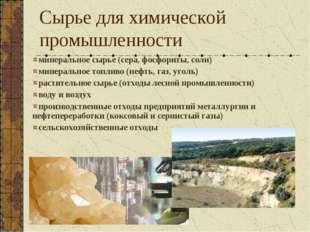 минеральное сырье (сера, фосфориты, соли) минеральное топливо (нефть, газ, уг