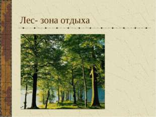 Лес- зона отдыха