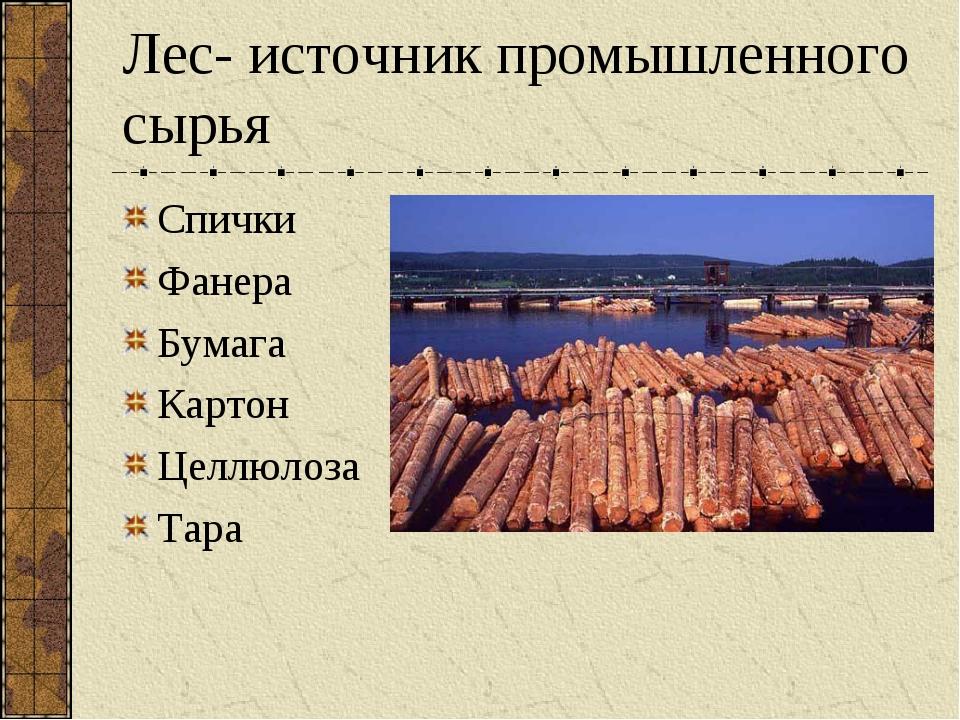 Лес- источник промышленного сырья Спички Фанера Бумага Картон Целлюлоза Тара
