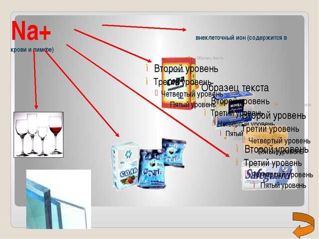 Na+                             внеклеточный ион (содержится в крови и лимфе)