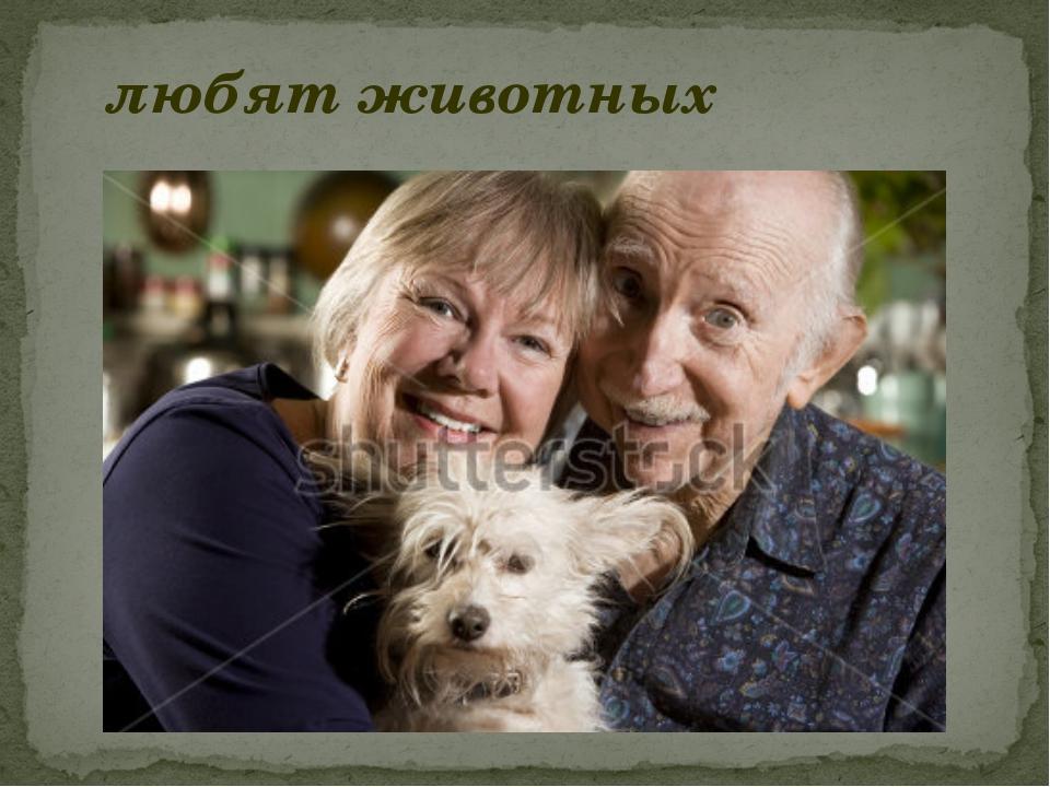 любят животных