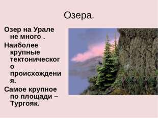 Озера. Озер на Урале не много . Наиболее крупные тектонического происхождения
