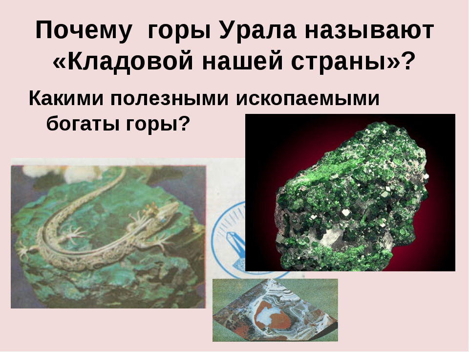 Почему горы Урала называют «Кладовой нашей страны»? Какими полезными ископаем...