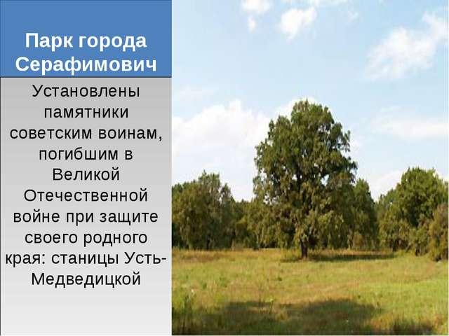 Парк города Серафимович Установлены памятники советским воинам, погибшим в Ве...