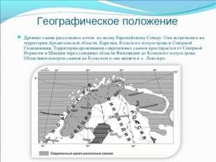 Географическое положение Древние саамы расселились почти по всему Европейском