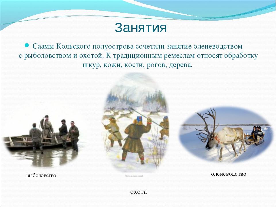 Занятия рыболовство Саамы Кольского полуострова сочетали занятие оленеводство...