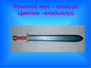 Римский меч – гладиус. Цветок –гладиолус.