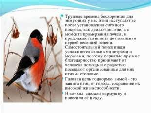Трудные времена бескормицы для зимующих у нас птиц наступают не после установ