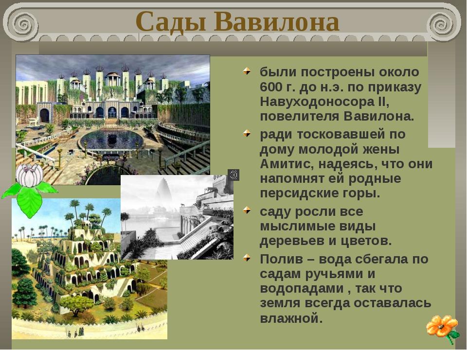 Сады Вавилона были построены около 600 г. до н.э. по приказу Навуходоносора I...