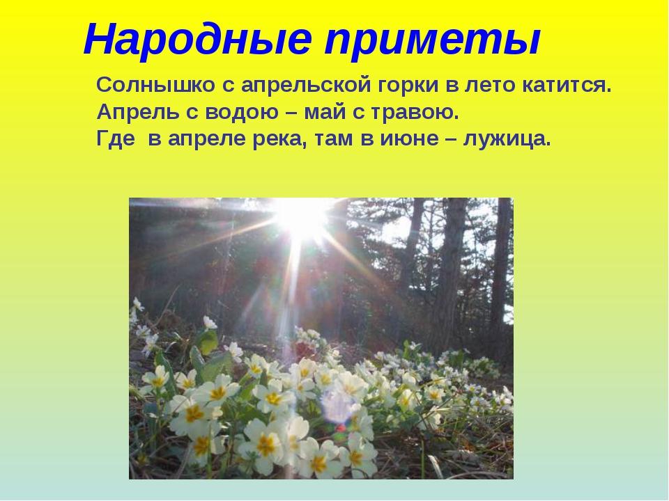 Народные приметы Солнышко с апрельской горки в лето катится. Апрель с водою –...