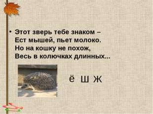 Этот зверь тебе знаком – Ест мышей, пьет молоко. Но на кошку не похож, Весь в