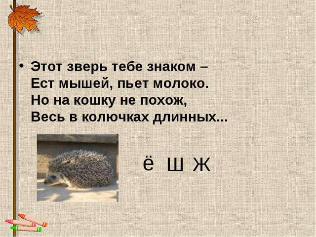 Этот зверь тебе знаком – Ест мышей, пьет молоко. Но на кошку не похож, Весь в...
