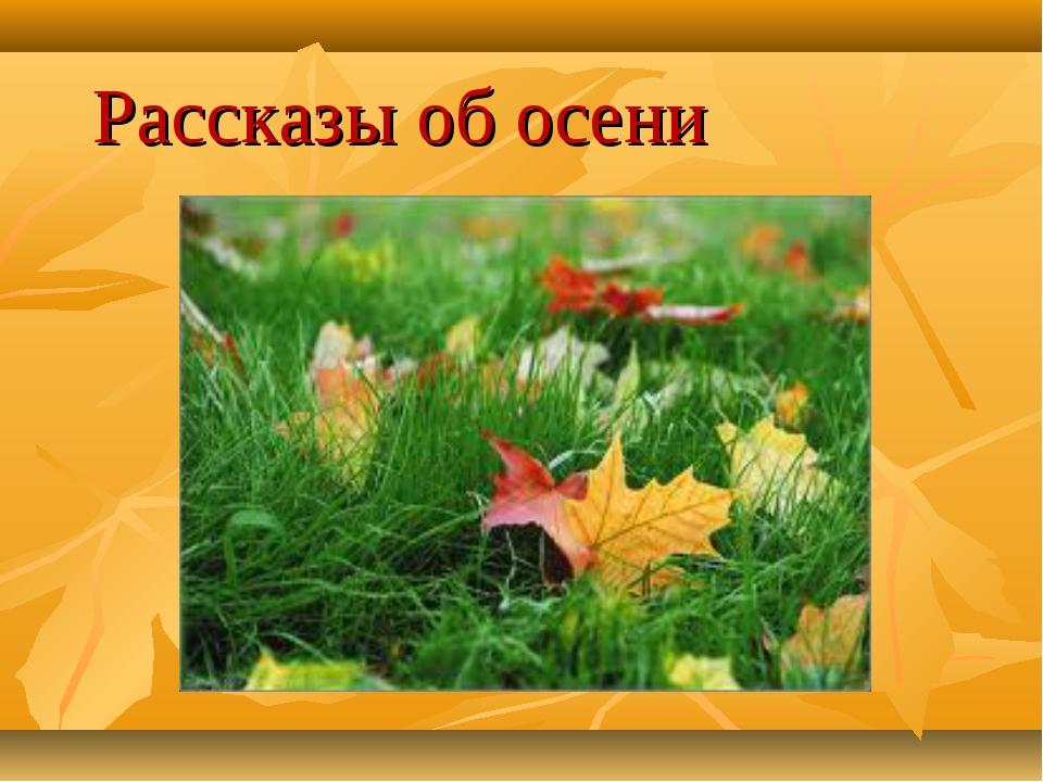 Рассказы об осени