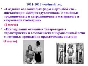 2011-2012 учебный год «Создание оболочковых форм и арт. объекта –инсталляции