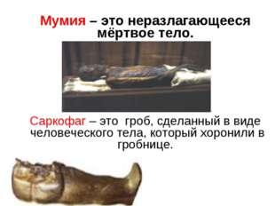 Мумия – это неразлагающееся мёртвое тело. Саркофаг – это гроб, сделанный в в