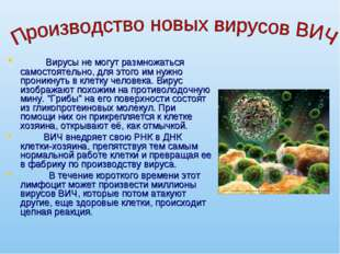 Вирусы не могут размножаться самостоятельно, для этого им нужно проникнуть в