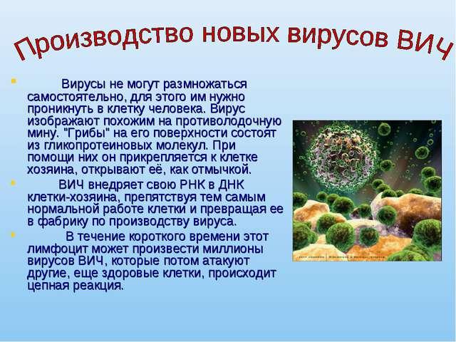 Вирусы не могут размножаться самостоятельно, для этого им нужно проникнуть в...
