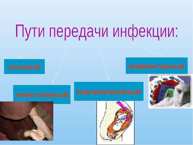 половой гематогенный внутриутробный алиментарный
