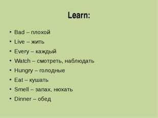 Learn: Bad – плохой Live – жить Every – каждый Watch – смотреть, наблюдать Hu