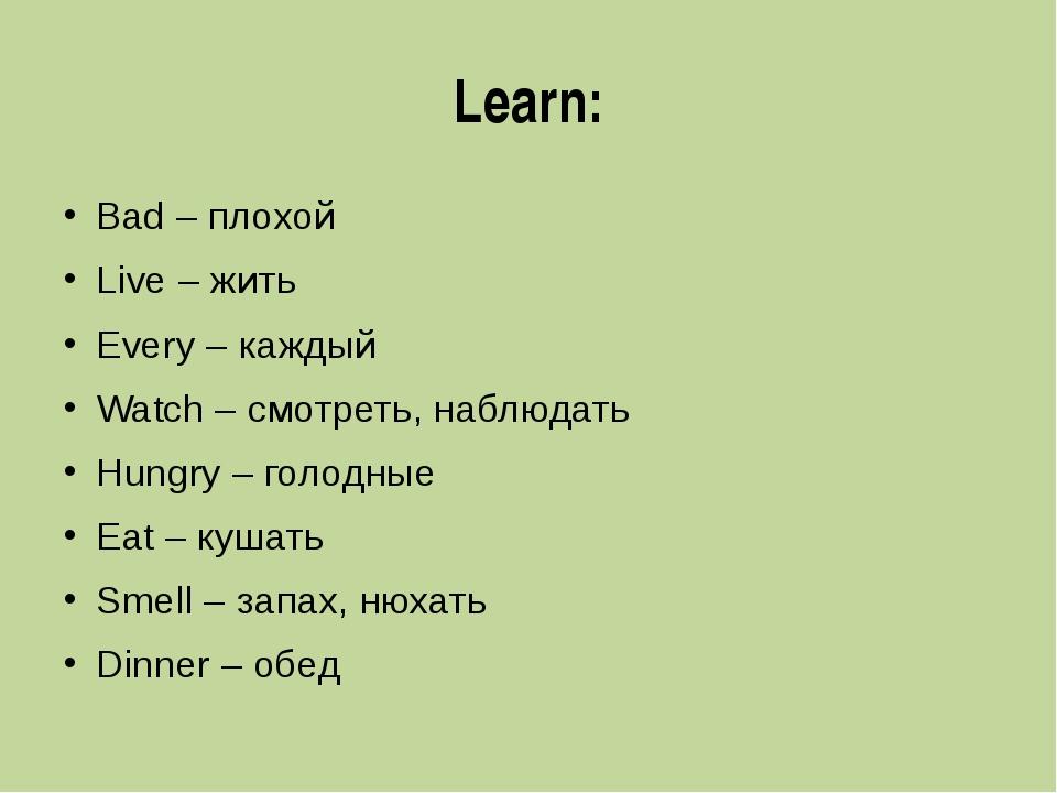 Learn: Bad – плохой Live – жить Every – каждый Watch – смотреть, наблюдать Hu...