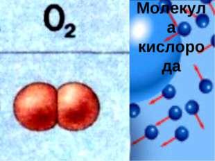 Молекула кислорода