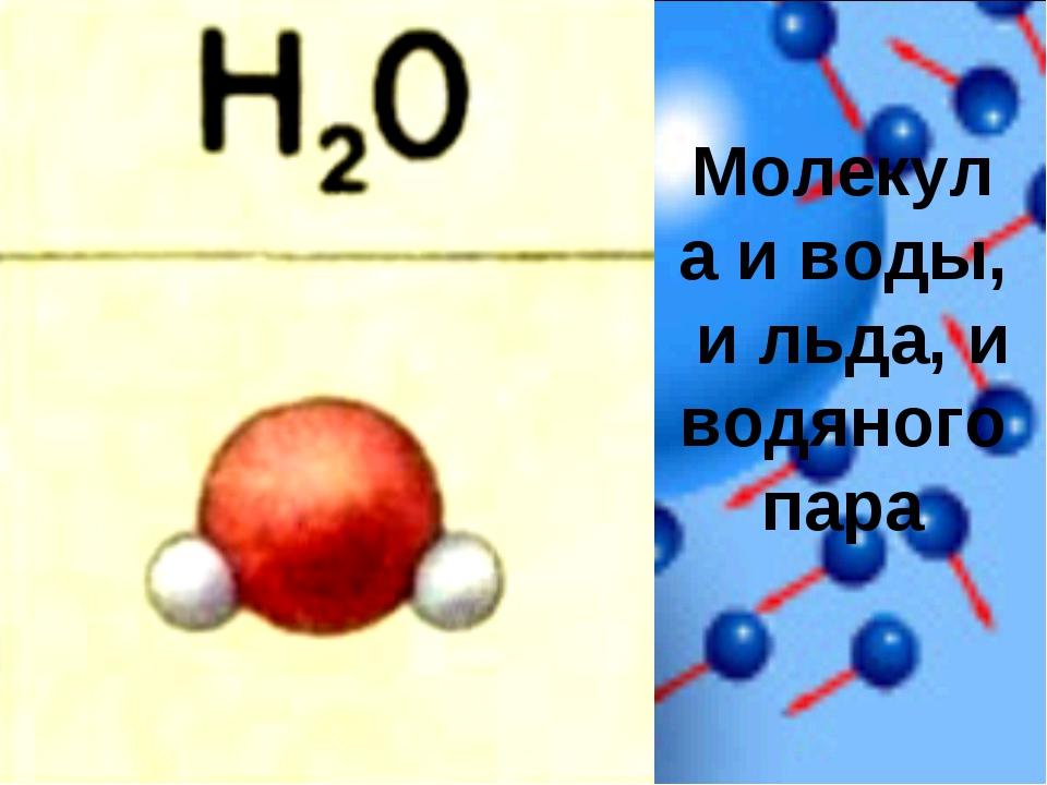 Молекула и воды, и льда, и водяного пара