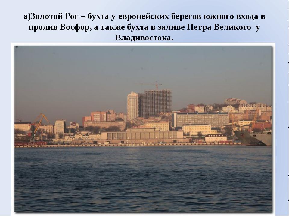 а)Золотой Рог – бухта у европейских берегов южного входа в пролив Босфор, а т...