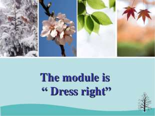 "The module is "" Dress right"""