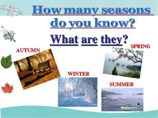 What are they? AUTUMN WINTER SUMMER SPRING