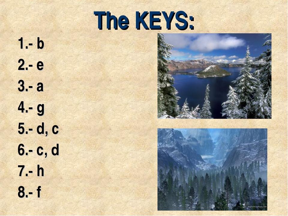 The KEYS: 1.- b 2.- e 3.- a 4.- g 5.- d, c 6.- c, d 7.- h 8.- f