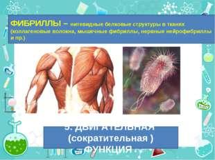 ФИБРИЛЛЫ – нитевидные белковые структуры в тканях (коллагеновые волокна, мыше