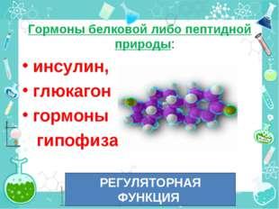 Гормоны белковой либо пептидной природы: инсулин, глюкагон гормоны гипофиза.