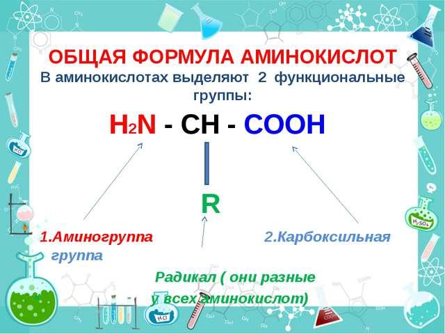 ОБЩАЯ ФОРМУЛА АМИНОКИСЛОТ В аминокислотах выделяют 2 функциональные группы:...