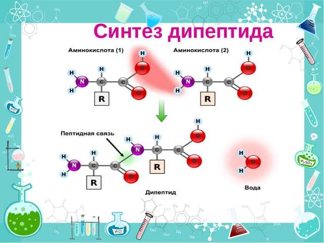 Синтез дипептида