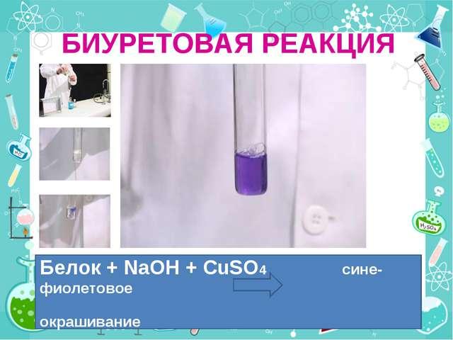БИУРЕТОВАЯ РЕАКЦИЯ Белок + NaOH + CuSO4 сине-фиолетовое окрашивание