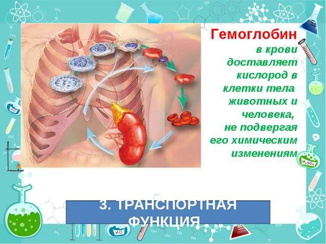 Гемоглобин в крови доставляет кислород в клетки тела животных и человека, не...