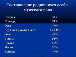 Соотношение родившихся особей мужского пола Человек 51% Лошадь52% Осел49%