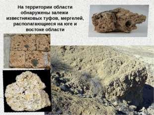 На территории области обнаружены залежи известняковых туфов, мергелей, распол