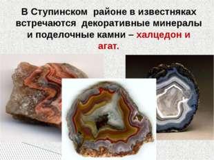 В Ступинском районе в известняках встречаются декоративные минералы и поделоч