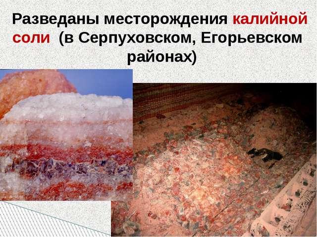 Разведаны месторождения калийной соли (в Серпуховском, Егорьевском районах)